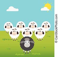 Black Sheep with Leadership Situation