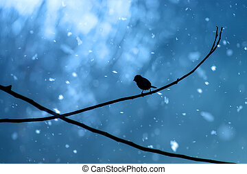 Black silhouette of a bird on a branch