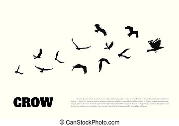 Black silhouette of a crow on a white background. Raven isolated