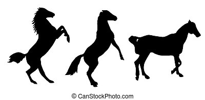 Black silhouette of a horse on a white background. Vector Illustration