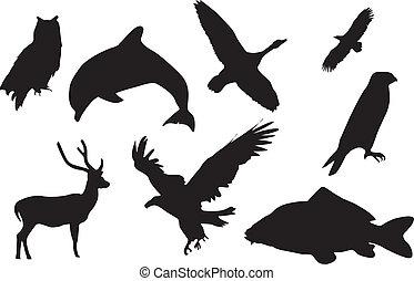 Black silhouette of animals