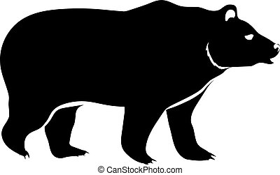 bear isolated on white
