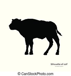 Black silhouette of bison calf on white background. Young ...