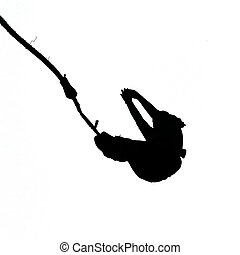 Black silhouette of bungee jumper isolated on white background