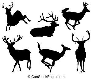 deers - Black silhouette of deers, vector
