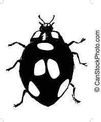 ladybird - black silhouette of ladybird
