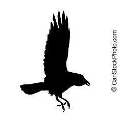 black silhouette of raven