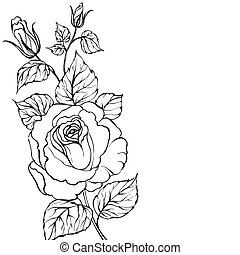 Black silhouette of rose.