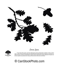Black silhouette of the oak branch on a white background. Oak leaves and acorns