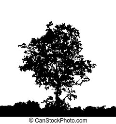 Black silhouette of tree.
