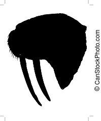 walrus - black silhouette of walrus