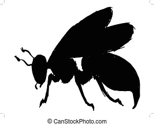 wasp - black silhouette of wasp