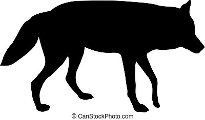black silhouette of wolf on white background of vector illustration