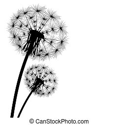 black silhouette with flying dandelion buds on a white...