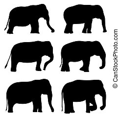 black silhouettes of elephants