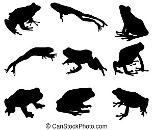 frog - Black silhouettes of frog, vector