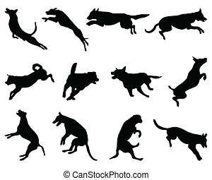 jumping dogs - Black silhouettes of jumping dogs, vector