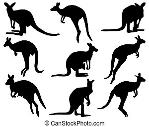 kangaroo - Black silhouettes of kangaroo, vector ...