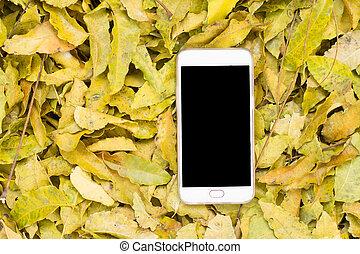 black smartphone screen and camera on neem leaves. mockup...