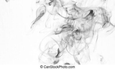 Black smoke rings go up, on a white background. Black smoke