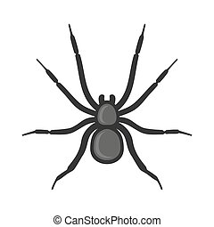 Black Spider Icon on White Background. Vector