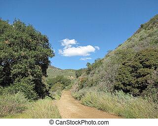 Black Star Canyon Road 2