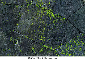 Black stone wall background with green moss and lichen. Nature texture