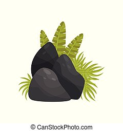 Black stones and tropical plants, element of tropical jungle landscape vector Illustration on a white background