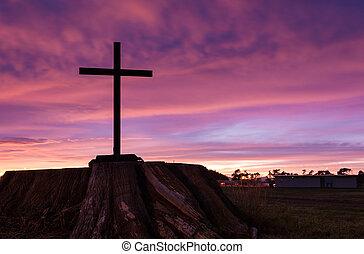 Black Stump Cross