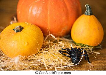 Black toy spider creeping towards three yellow and orange ripe pumpkins on straw