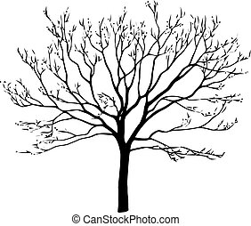 Black tree silhouette isolated on white background. Vector illustration