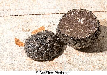 black truffle isolated