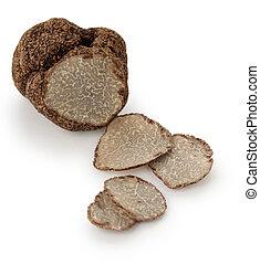 black truffle on white background - slice version