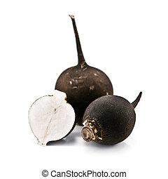 turnip - black turnip isolated on white