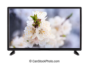 Black TV with  picture on the monitor of the landscape of  bloom