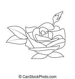 black , vector, bloem, roos, witte
