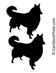 black vector silhouettes of Collie Rough dogs