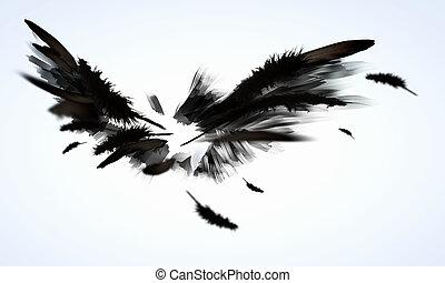 black , vleugels