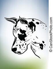 Black white dog