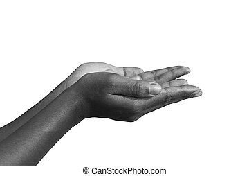 Black & White human hands