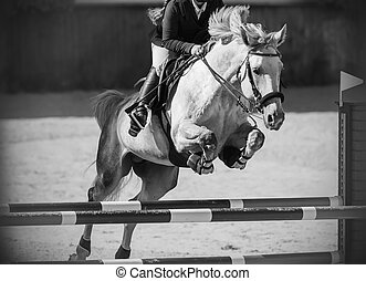 Black-white image of a white horse, which jumps over a high barrier
