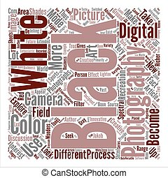 Black White Photography text background word cloud concept