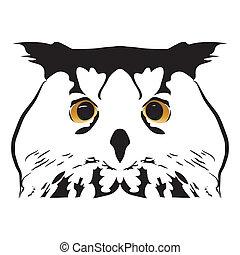 Black white portrait of a predator owl