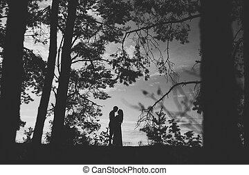 Black-white silhouettes