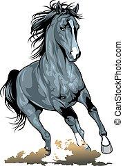 black wild horse isolated on the white background