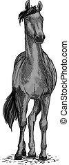 Black wild horse or trotter vector symbol - Horse or mustang...
