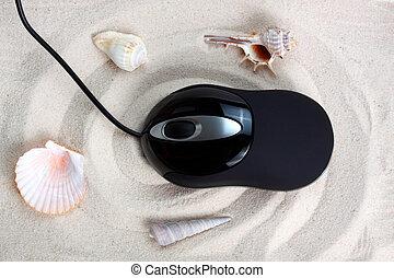 mouse on beach sand