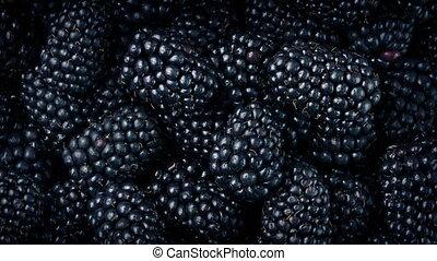 Blackberries Closeup - Juicy blackberry fruits rotating...