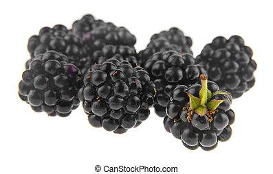 blackberries isolated on white background