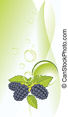 Blackberry and bubbles